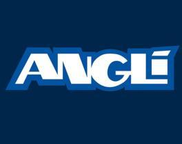 ANGLI MATERIAL ELECTRIC-250699 11004 -