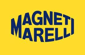 FAMILIA MAGNE SUBFAMILIA MAGNE  Magneti Marelli