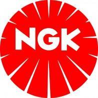 Calentadores  Ngk