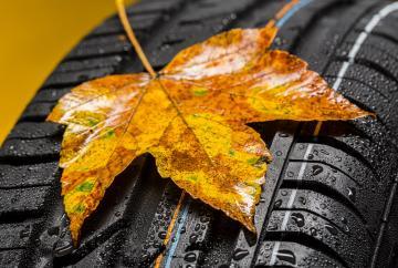 Diez revisiones para poner el vehículo a punto en otoño